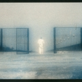 "Christina Z. Anderson - ""Gate"" (Bozeman, MT)"