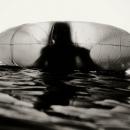 "Deb Schwedhelm - ""Kiele, Tampa, 2012"""
